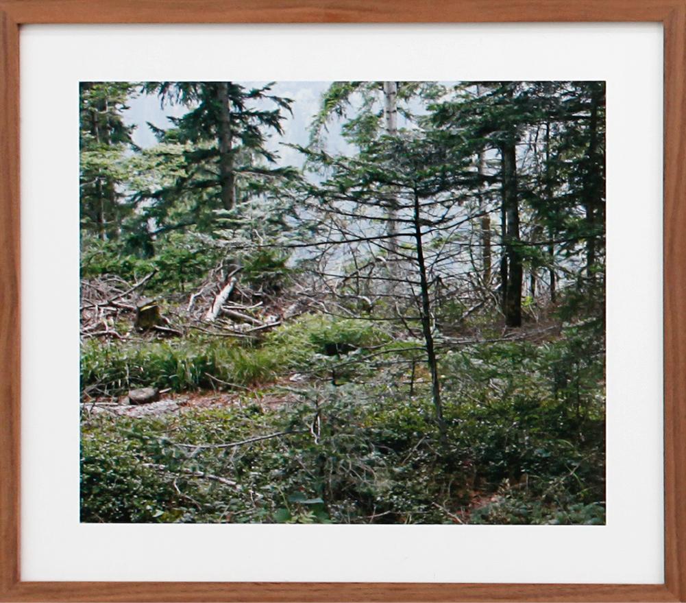 Paula Doepfner - Fallen #1 (series of 3 photographs), 2010