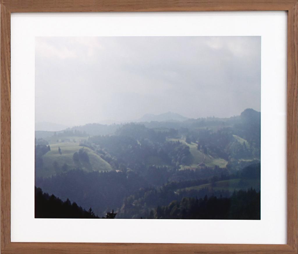 Paula Doepfner - Fallen #3 (series of 3 photographs), 2010