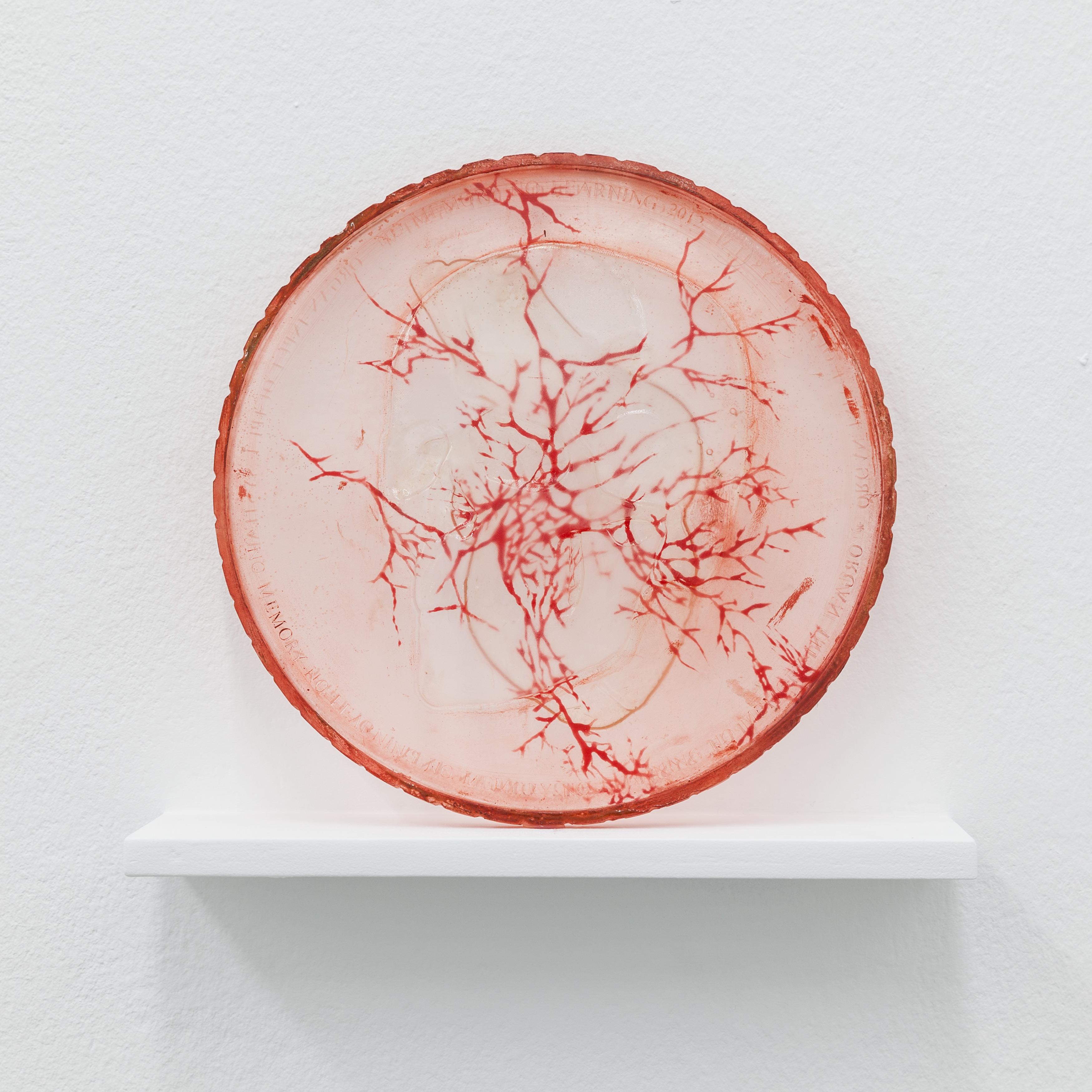 Mariechen Danz - Coin (skull/heart), 2013